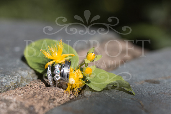 Ben_&_Sophie_Brook_Meadow_Wedding 01003