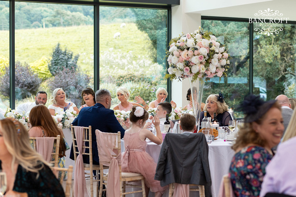 Mark & Sue - Tyn Dwr Hall Wedding 00660