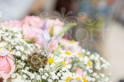 Chris_and_Lianne_Rainford_Village_Hall_Wedding-00159