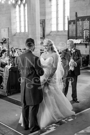 Martin & Nicola - Village on the Green Wedding -01171