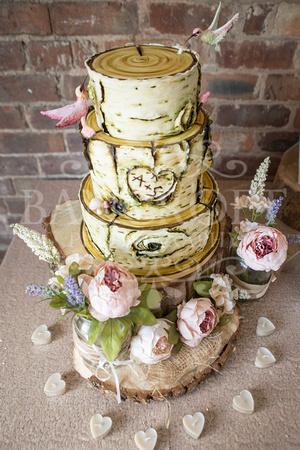 Alex_&_Sarah_Manley_Mere_Wedding 00005